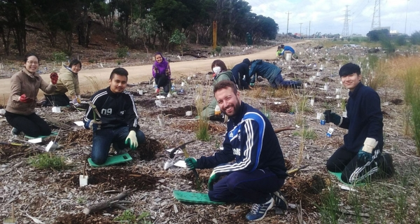 Volunteers from a local English language school help mulch and plant.