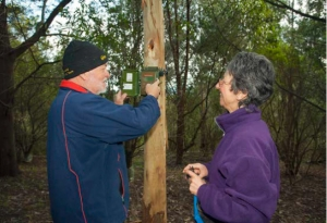 Committee members Paul Strickland and Merrin Butler install a 'song meter' as part of their work with the Friends of Mount Worth State Park.