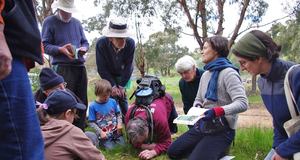 Friends of Iron Bark Forest engaging in citizen science projects.